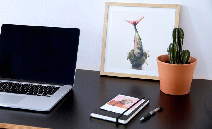 Tránh đặt cây xương rồng trên bàn làm việc